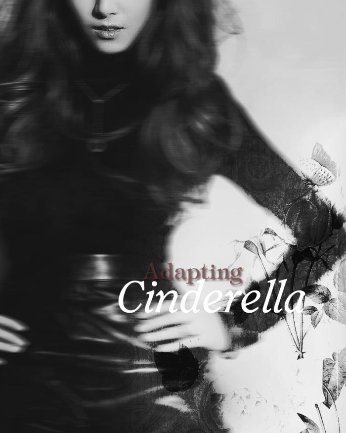 Adapting Cinderella Poster