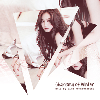 charisma of winter psd
